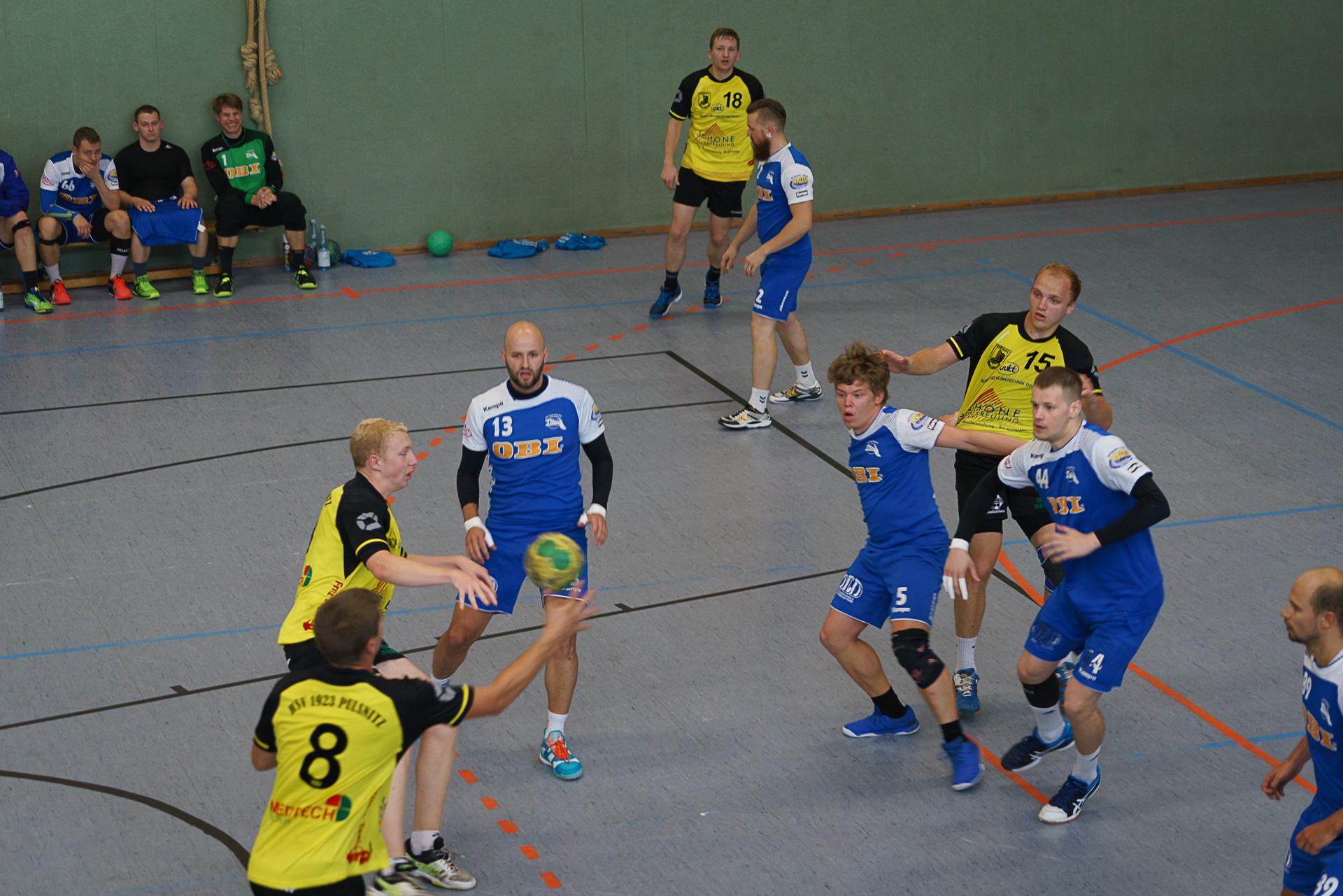Handball Pulsnitz