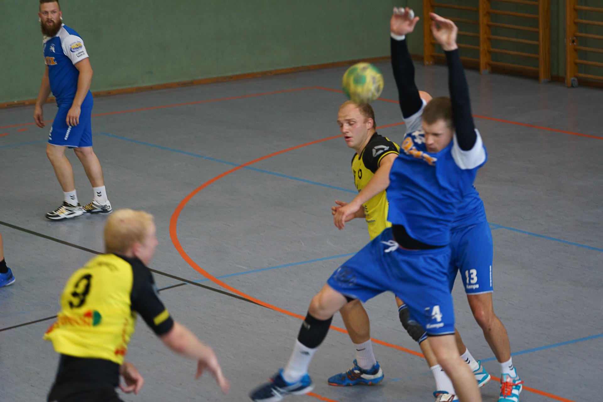 Pulsnitz Handball